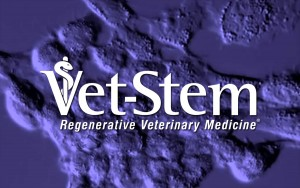 ocala-veterinary-hospital-vet-stem
