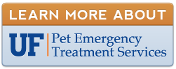 Visit the UF Pet Emergency Treatment Services in Ocala